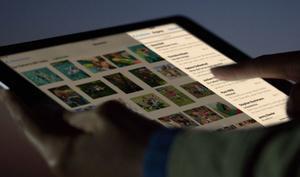Markenrechtsantrag verrät Apples Pläne für Night Shift