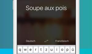 App des Monats: Microsoft Translator - Dolmetscher für die Reise im Test