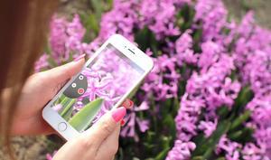 iOS 10: Sparen Sie Datenvolumen, indem Sie Bilder in niedriger Qualität verschicken