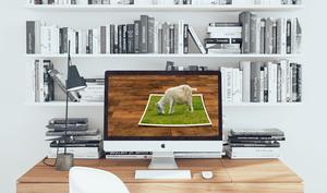 10 coole Mac-Apps für die Bildbearbeitung