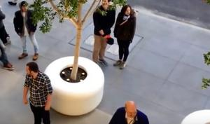 Apple lässt Pflanztöpfe aus dem Apple Store schützen