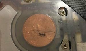 Woher stammen die mysteriösen Münzen im MacBook Pro?