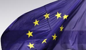 EU soll es richten: Rocket Internet, Spotify und andere beschweren sich wegen Apple und Google