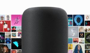 Siri bleibt beliebtester Sprachassistent, trotz rückläufiger Nutzung