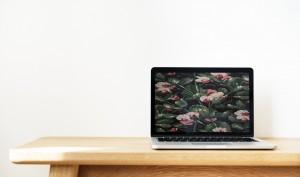 macOS: Mit diesem Tool können Sie Webseiten als Bildschirmschoner festlegen