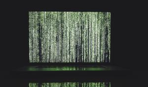 Schlag gegen Cyberkriminelle: DDoS-Service abgeschaltet, Admins verhaftet