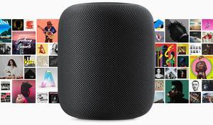 HomePod: Apple gibt Hinweis auf Verkaufsstart in Deutschland