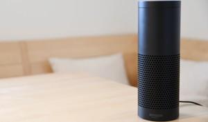Ups: Smart Speaker überholen Wearables noch dieses Jahr