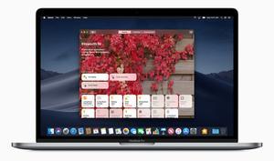 Craig Federighi: Touchscreen-Macs wird es nicht geben