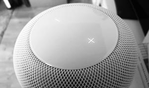 iOS 12 Beta 2: Siri macht Probleme - auch auf dem HomePod