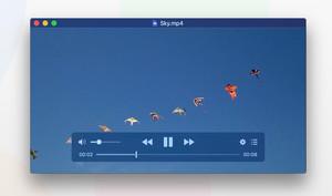 IINA: Neuer Media Player für macOS mit Dark Mode und YouTube-Playlists