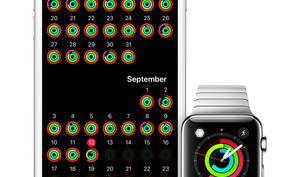 Das Team für Ihre Gesundheit: Apple Watch mit Aktivitäten-App