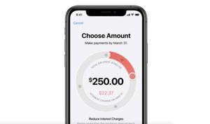 Apple Card: Keine Gebühren, aber Wucherzinsen?