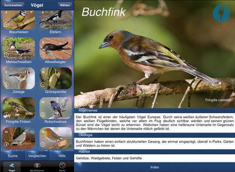 7577f101165 Vogel Id – Gartenvögel Deutschlands - Vögel Erkennen, Bestimmen und Zählen  - App - Test | Mac Life