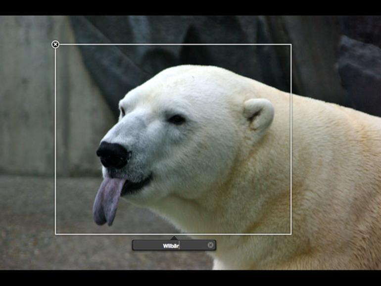 Bei iPhoto 09 anonymen Gesichtern Namen geben
