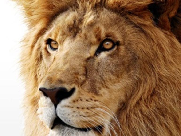 So soll's gehen: Eigene Lion-Boot-DVD erstellen