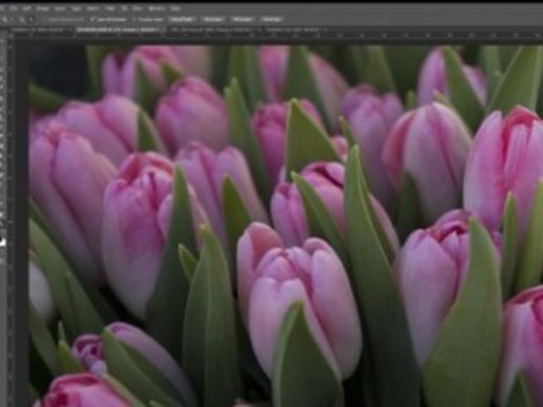 Photoshop und Lightroom sollen Retina-Macs unterstützen