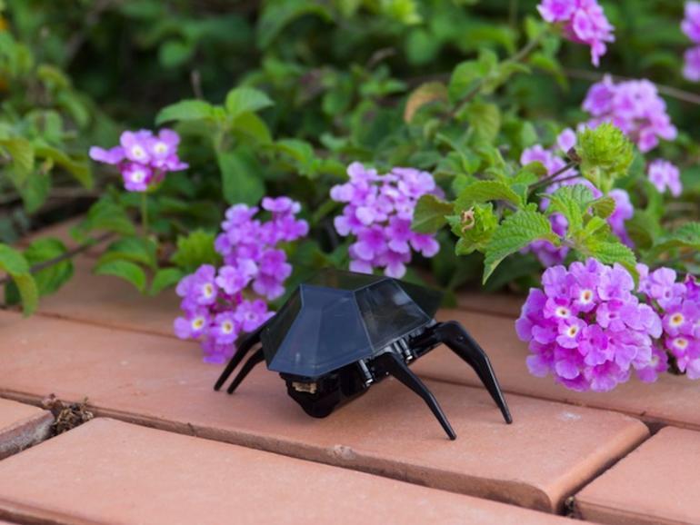 Spielzeug: Roboter-Insekten mit iPhone-Steuerung