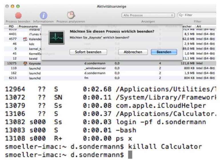 Programme sofort beenden über die Aktivitätsanzeige und per Terminalbefehl
