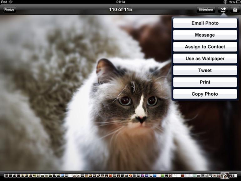 "OS X Mountain Lion: Was versteckt sich hinter der ""Share Sheets""-Funktion?"