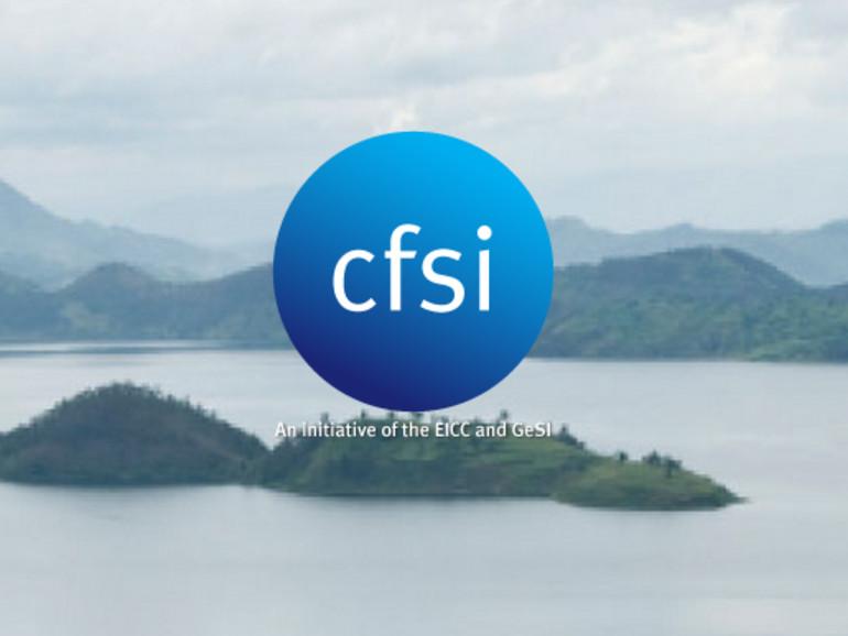 Das Unternehmen hat einen Audit der Organisation Conflict-Free Sourcing Initiative eingeführt