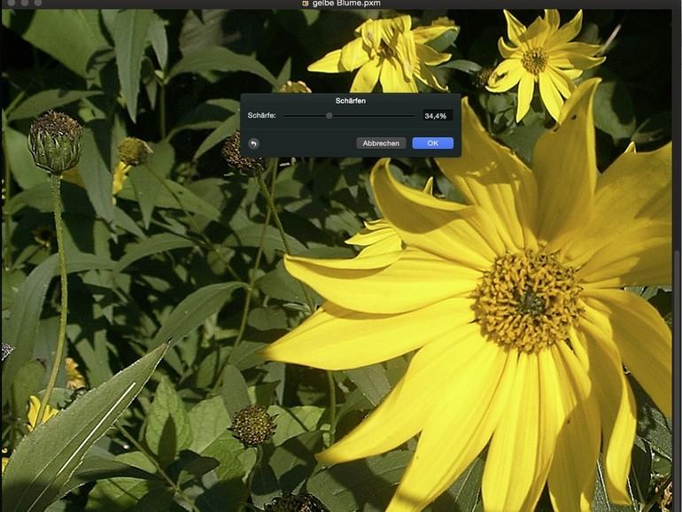 Pixelmator: Die 8 besten Effekte für schönere Bilder