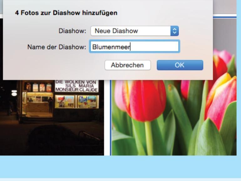 Mixxxer - die Swinger App und Willow - Dating App für jeden als ...