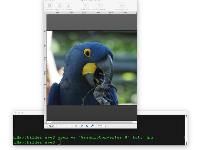 Dateien lassen sich mit beliebigen – kompatiblen –Programmen in der Kommandozeile öffnen.