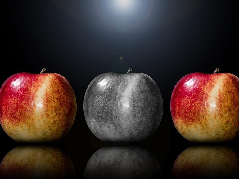 Welche Information ist wichtig und richtig, und welche raubt die Vorfreude? Die Auswahl ist oft ein schmaler Grat.