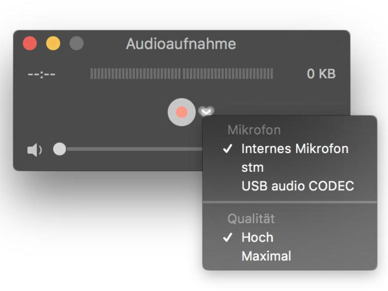 Für die Audioaufnahme können Sie verschiedene Quellen wählen.