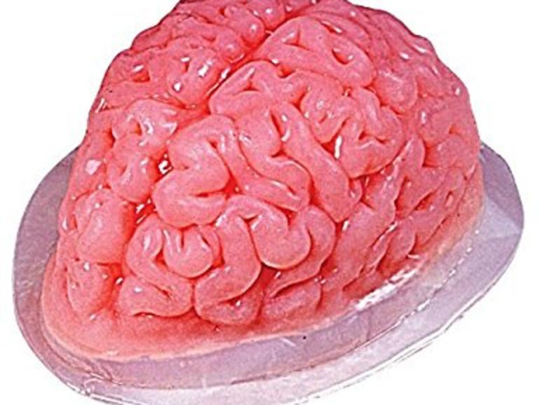 Puddingform Gehirn – ist das spaßig oder ekelig?