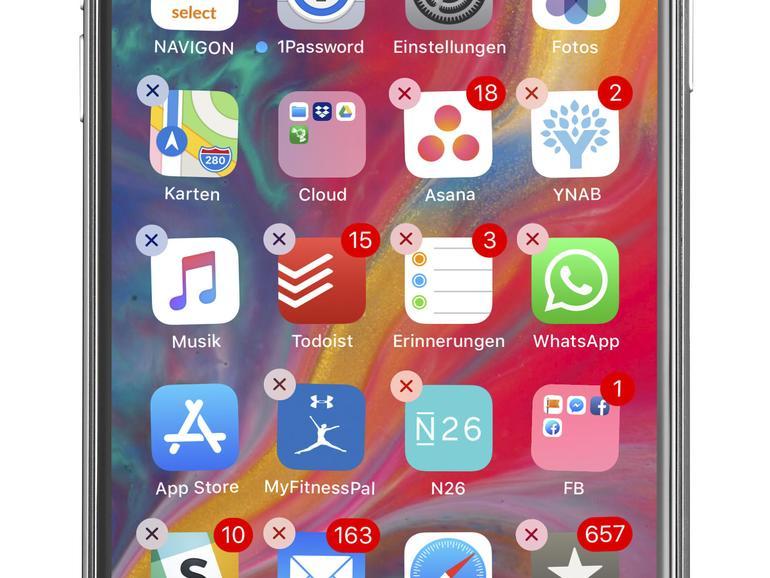iPhone X Dashboard