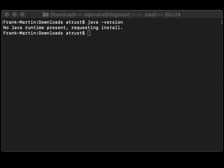 Abfragen der Java-Version über die Kommandozeile