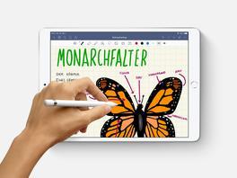Quo vadis, iPad? Welches Apple-Tablet man sich 2019 kaufen sollte