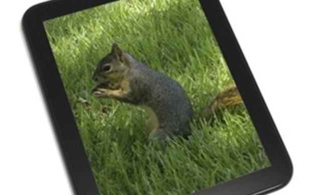 """iPad-Konkurrenz: HP probiert sich erneut am Thema """"Tablet"""""""