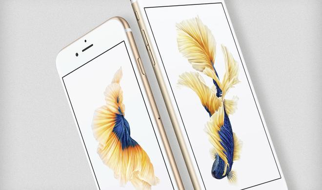 iPhone 6s oder iPhone 6s Plus: Welches iPhone soll ich kaufen?