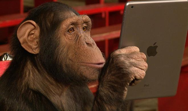 iPad-Magier Simon Pierro startet ins Jahr des Affen