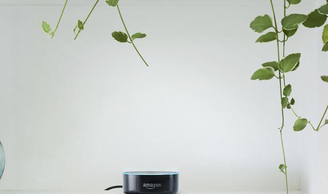 Im Test: Amazons Alexa ist eine charmante Mitbewohnerin mit Schwächen