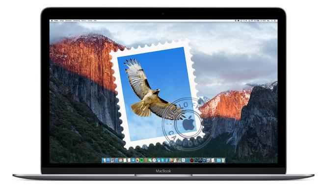 So lassen Sie sich nur ungelesene E-Mails am Mac anzeigen