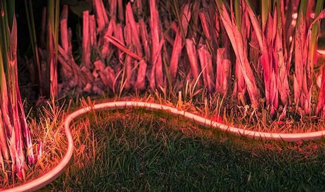 Philips Hue Lightstrip für den Garten