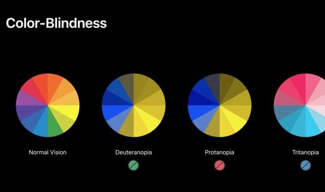 iOS 13 führte neue Bedienungshilfen für Farbenblinde ein