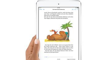 Hol mehr aus deinen eBooks: So passt du iBooks an