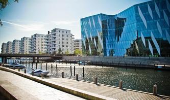 Digitales Dänemark: Die digitale Gesellschaft