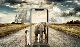 iPhone: Was ist das nächste große Ding?